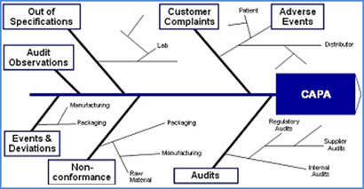 quality management capa process