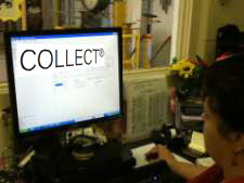 collect-warehouse-management2